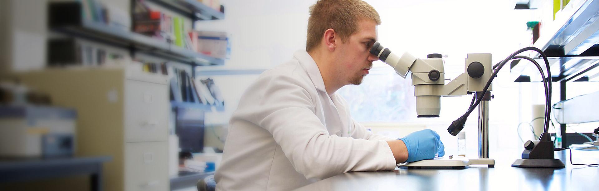 UBCO Okanagan Biology Graduate Student looking through a microscope in Lab